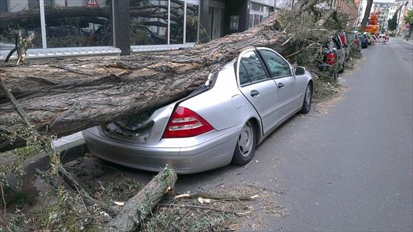 ニュージーランドで対物や自損事故に保険は効く?